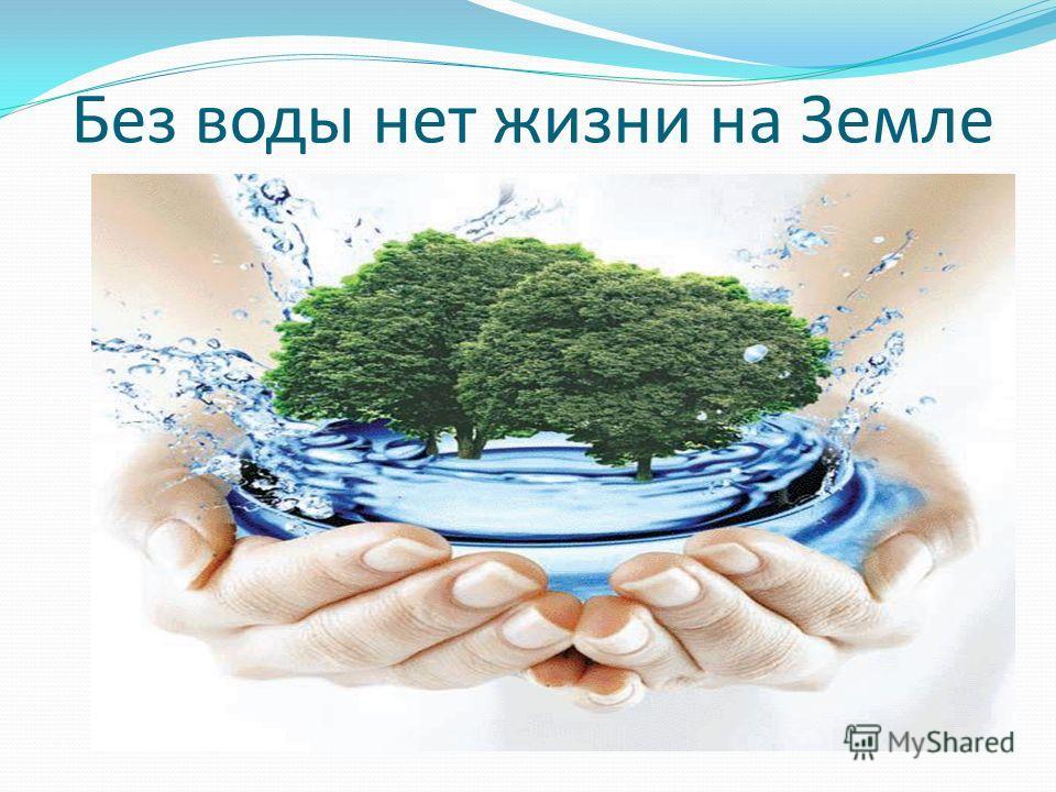 Без воды нет жизни на Земле