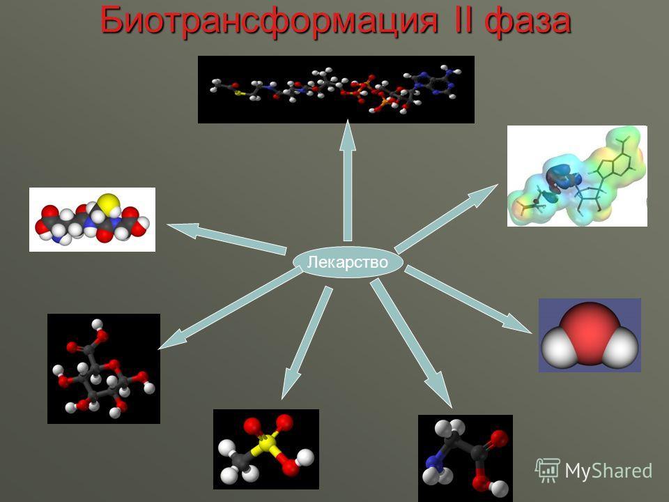 Биотрансформация II фаза Лекарство