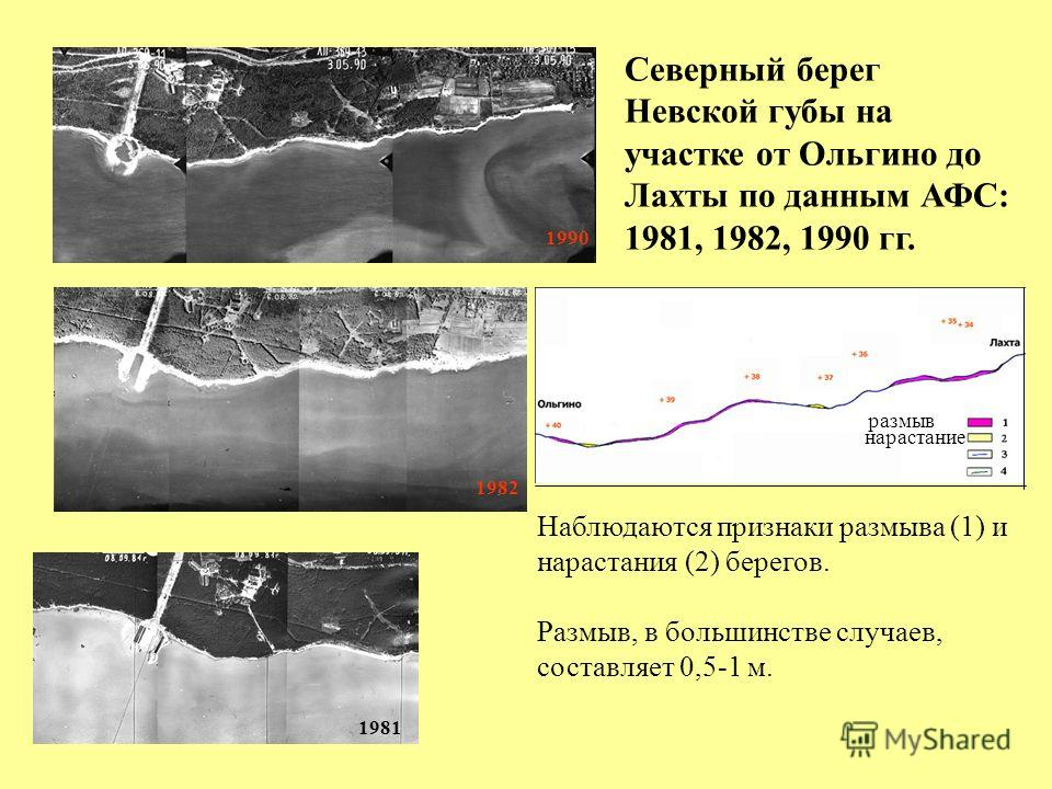 1990 1982 1981 Северный берег Невской губы на участке от Ольгино до Лахты по данным АФС: 1981, 1982, 1990 гг. Наблюдаются признаки размыва (1) и нарастания (2) берегов. Размыв, в большинстве случаев, составляет 0,5-1 м. размыв нарастание