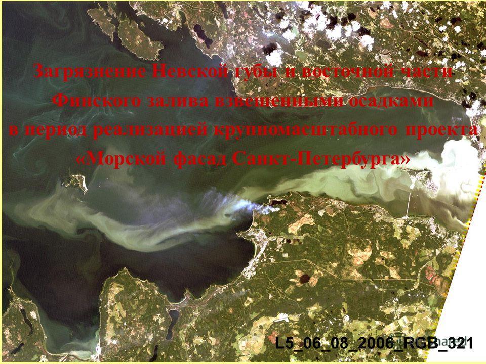 Загрязнение Невской губы и восточной части Финского залива взвешенными осадками в период реализацией крупномасштабного проекта «Морской фасад Санкт-Петербурга» L5_06_08_2006_RGB_321