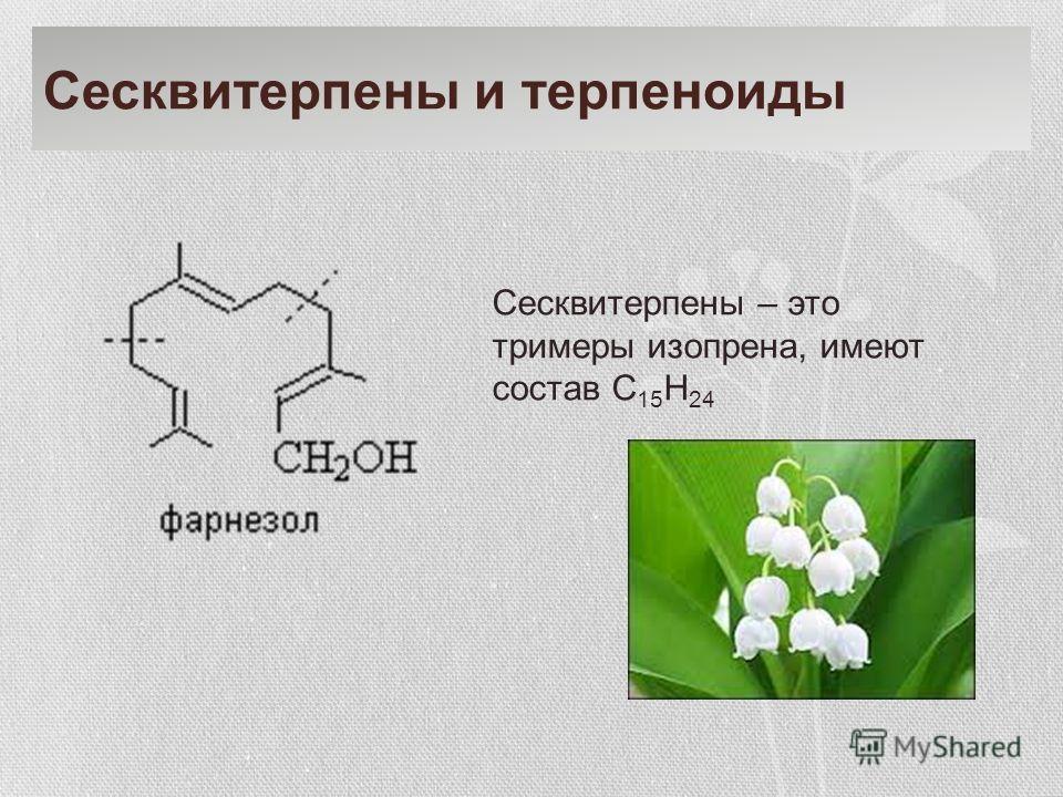 Сесквитерпены и терпеноиды Сесквитерпены – это триммеры изопрена, имеют состав С 15 Н 24