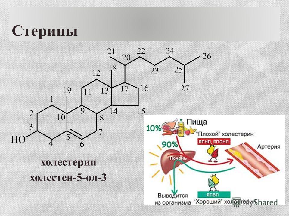 Стерины холестерин холестен-5-ол-3