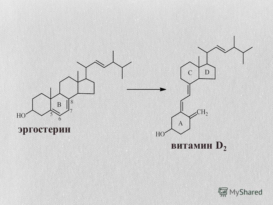эргостерин витамин D 2