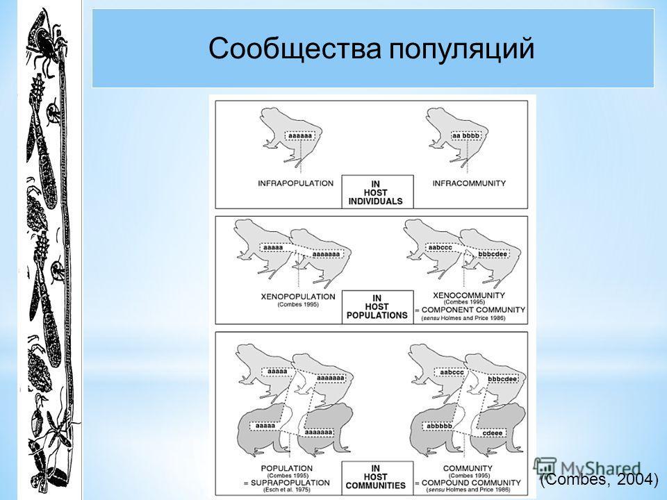 Сообщества популяций (Combes, 2004)