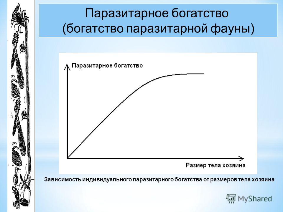 Зависимость индивидуального паразитарного богатства от размеров тела хозяина Паразитарное богатство (богатство паразитарной фауны)