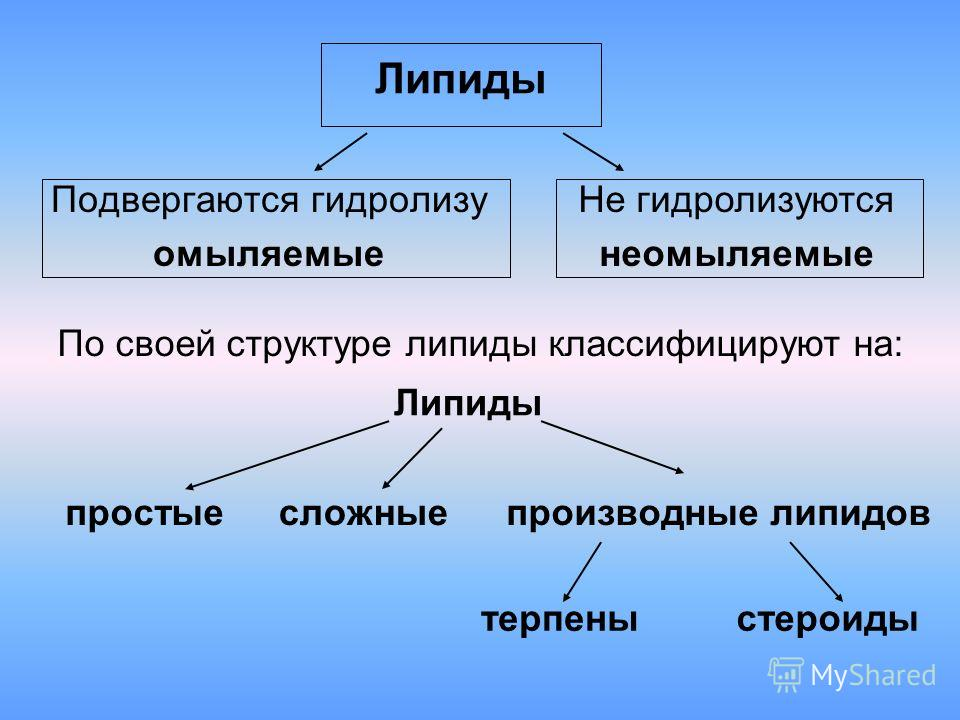 Липиды Подвергаются гидролизу омыляемые Не гидролизуются неомыляемые Липиды простые сложные производные липидов терпеныстероиды По своей структуре липиды классифицируют на: