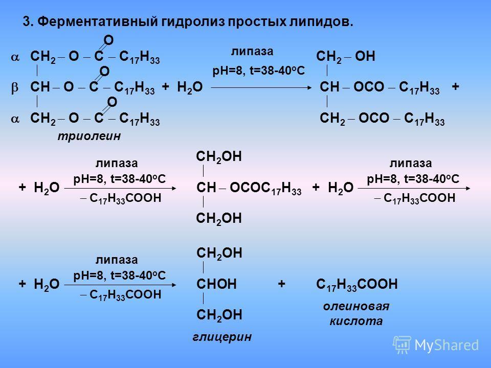 3. Ферментативный гидролиз простых липидов. СН 2 О С С 17 Н 33 О триолеин СН О С С 17 Н 33 О СН 2 О С С 17 Н 33 О СН 2 ОН СН ОСО С 17 Н 33 СН 2 ОСО С 17 Н 33 +Н2ОН2О липаза СН 2 ОН СН ОСОС 17 Н 33 СН 2 ОН СНОН СН 2 ОН + +Н2ОН2О рН=8, t=38-40 o C липа