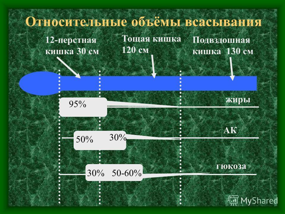 Относительные объёмы всасывания 12-перстная кишка 30 см Тощая кишка 120 см Подвздошная кишка 130 см 95% 50% 30% 50-60% жиры АК гюкоза