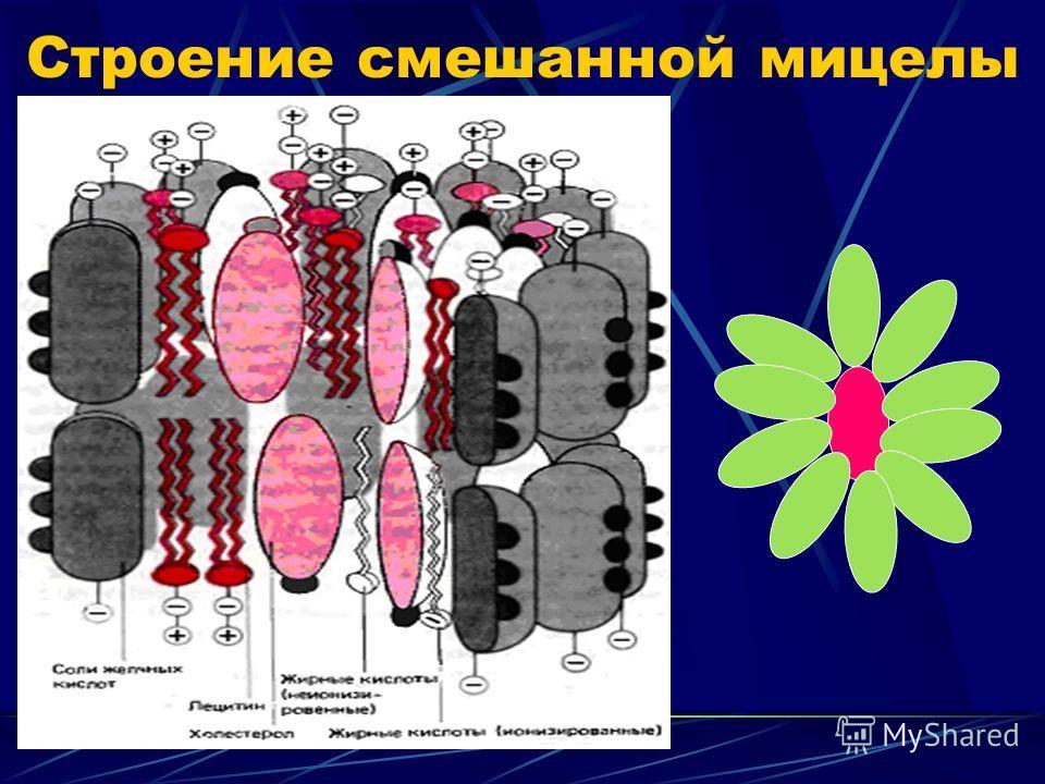 Строение смешанной мицелы