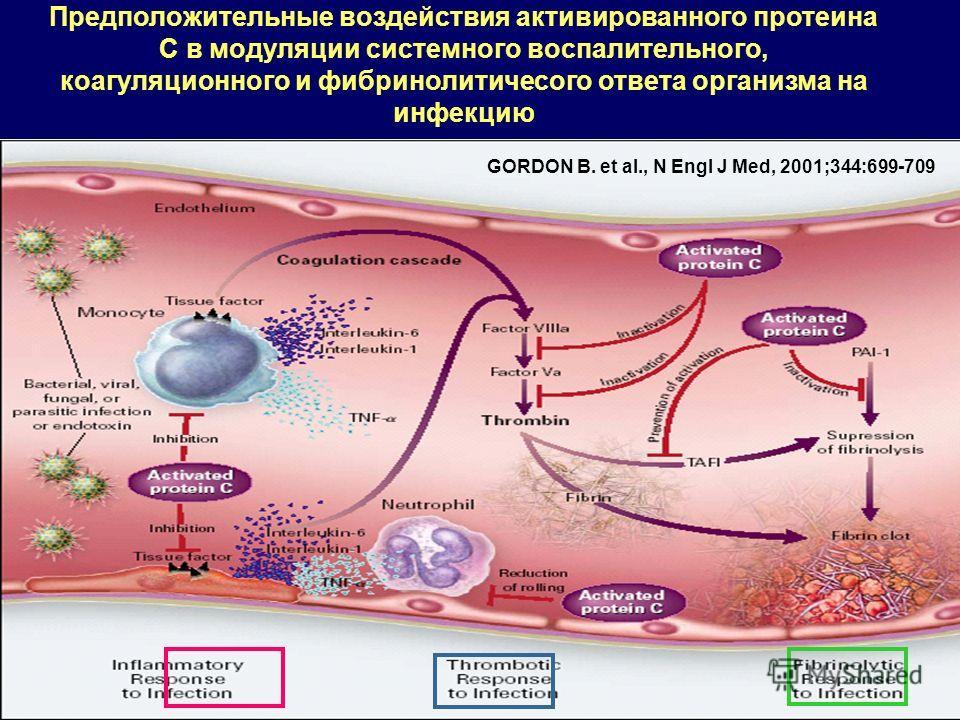 Предположительные воздействия активированного протеина C в мoдуляции системного воспалительного, коагуляционного и фибринолитичесого ответа организма на инфекцию GORDON B. et al., N Engl J Med, 2001;344:699-709