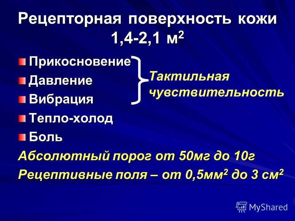 Рецепторная поверхность кожи 1,4-2,1 м 2 ПрикосновениеДавлениеВибрацияТепло-холодБоль Абсолютный порог от 50мг до 10г Рецептивные поля – от 0,5мм 2 до 3 см 2 Тактильная чувствительность