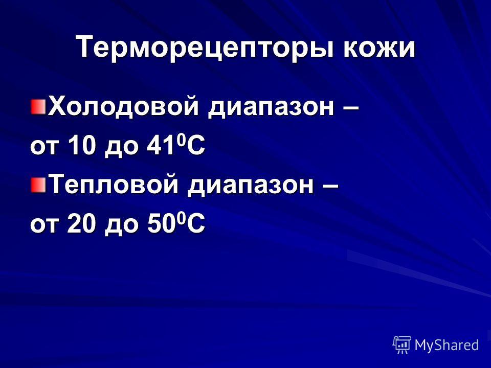 Терморецепторы кожи Холодовой диапазон – от 10 до 41 0 С Тепловой диапазон – от 20 до 50 0 С