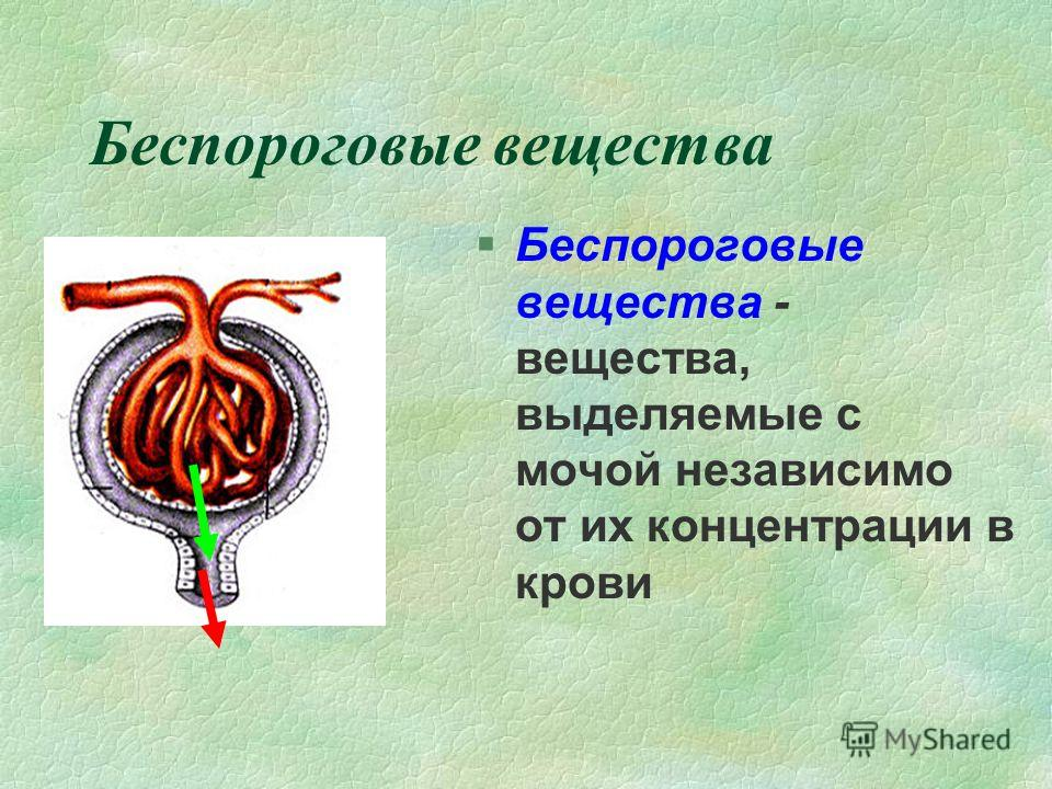Беспороговые вещества §Беспороговые вещества - вещества, выделяемые с мочой независимо от их концентрации в крови