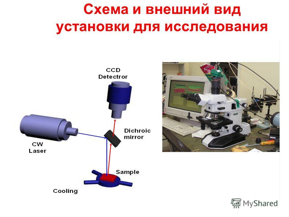 Схема и внешний вид установки для исследования «мерцания» люминесценции
