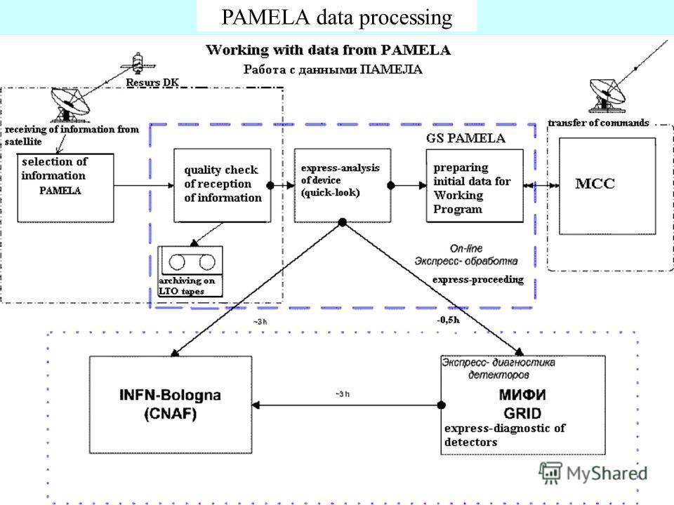 10 PAMELA data processing