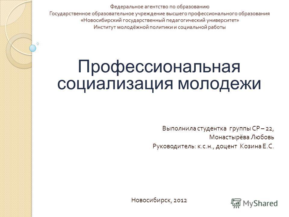 Федеральное агентство по образованию Государственное образовательное учреждение высшего профессионального образования « Новосибирский государственный педагогический университет » Институт молодёжной политики и социальной работы Профессиональная социа