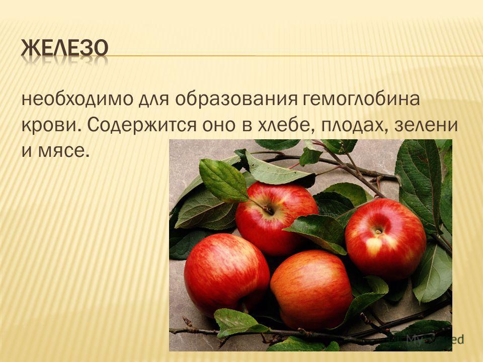 необходимо для образования гемоглобина крови. Содержится оно в хлебе, плодах, зелени и мясе.