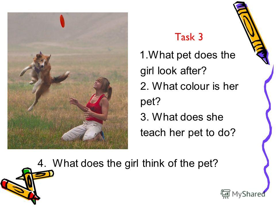 Task 3 1. What pet does the girl look after? 2. What colour is her pet? 3. What does she teach her pet to do? 4. What does the girl think of the pet?