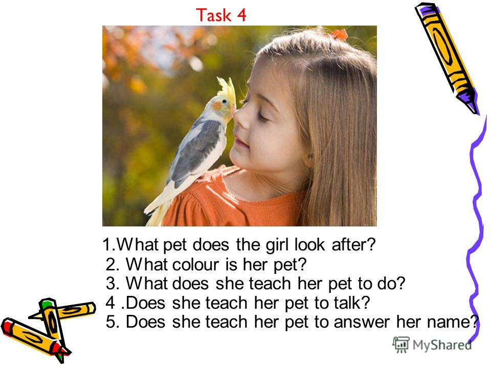 Task 4 1. What pet does the girl look after? 2. What colour is her pet? 3. What does she teach her pet to do? 4. Does she teach her pet to talk? 5. Does she teach her pet to answer her name?