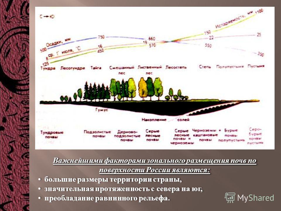 Важнейшими факторами зонального размещения почв по поверхности России являются : большие размеры территории страны, значительная протяженность с севера на юг, преобладание равнинного рельефа. Важнейшими факторами зонального размещения почв по поверхн