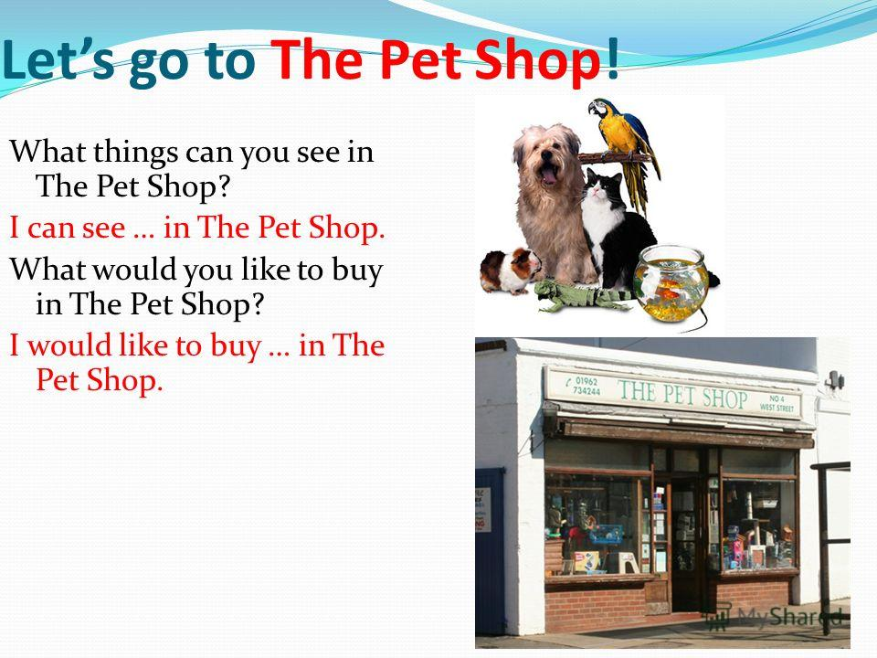 8 Lets go to The Pet Shop! What things can you see in The Pet Shop? I can see … in The Pet Shop. What would you like to buy in The Pet Shop? I would like to buy … in The Pet Shop.