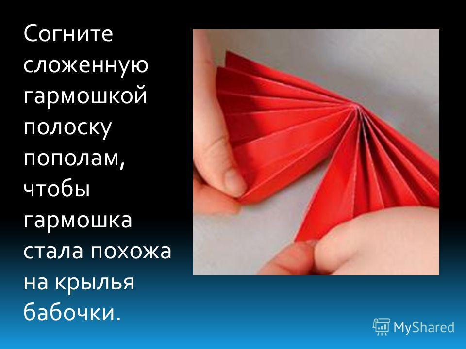 Согните сложенную гармошкой полоску пополам, чтобы гармошка стала похожа на крылья бабочки.