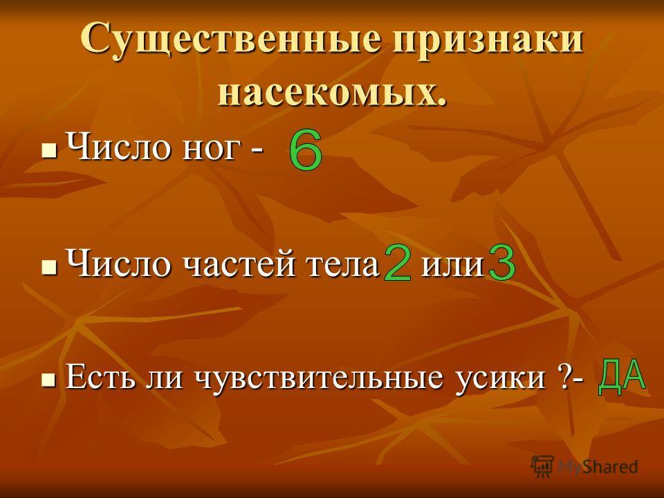 Существенные признаки насекомых. Число ног - Число ног - Число частей тела или Число частей тела или Есть ли чувствительные усики ?- Есть ли чувствительные усики ?-