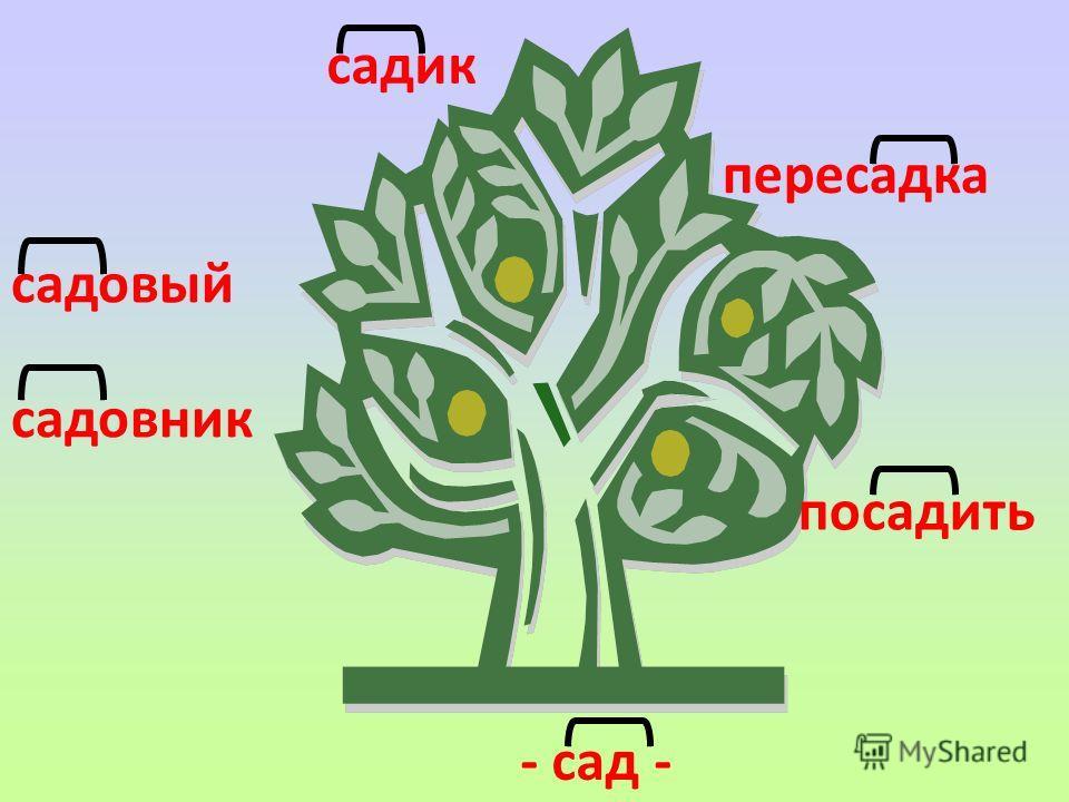 садовый садовник - сад - садик пересадка посадить