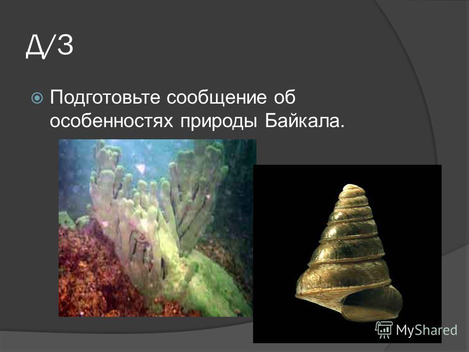 Д/З Подготовьте сообщение об особенностях природы Байкала.