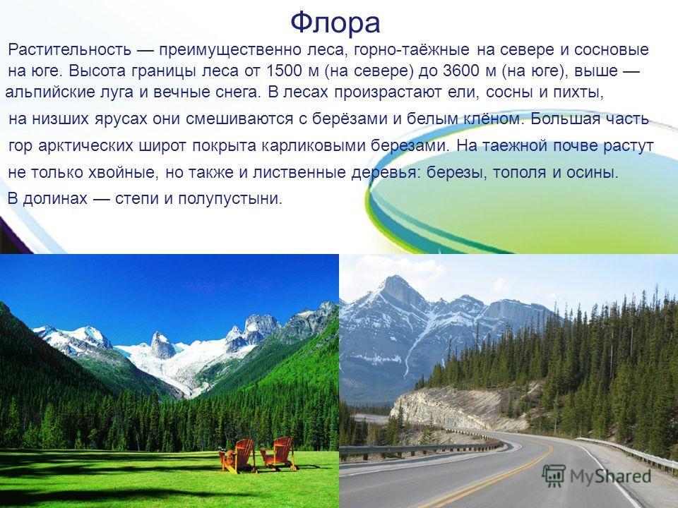 Флора Растительность преимущественно леса, горно-таёжные на севере и сосновые на юге. Высота границы леса от 1500 м (на севере) до 3600 м (на юге), выше альпийские луга и вечные снега. В лесах произрастают ели, сосны и пихты, на низших ярусах они сме