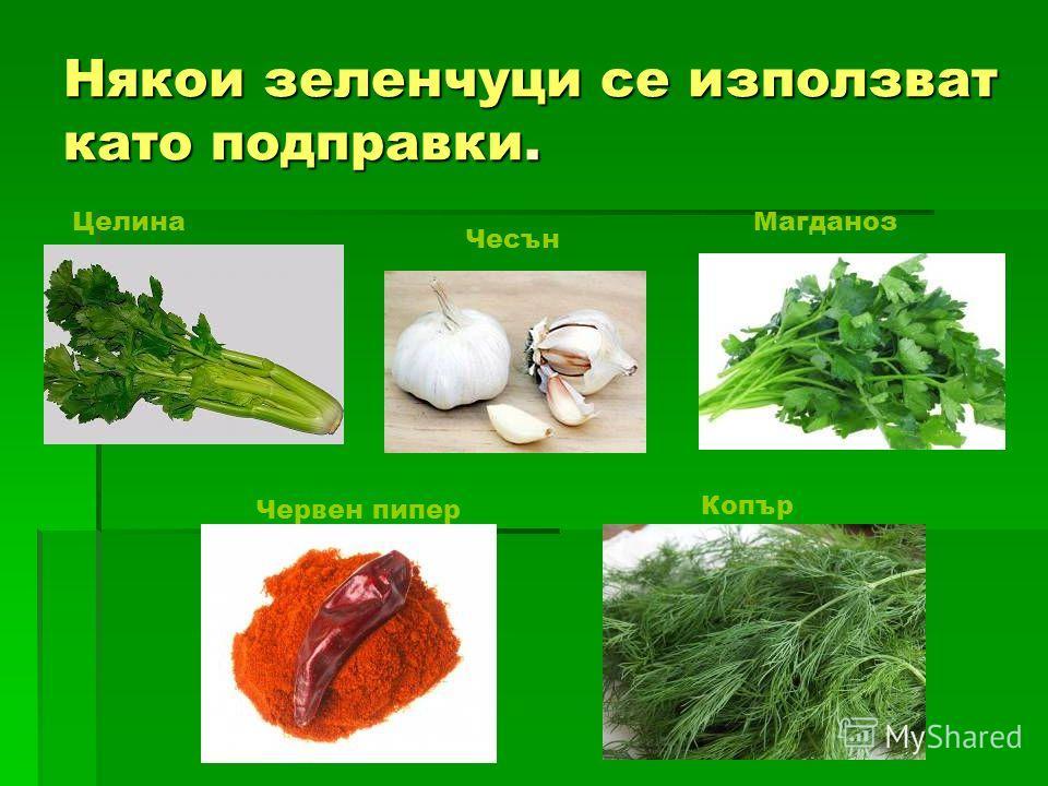 Някои зеленчуци се использовать като подправки. Целина Копър Магданоз Чесън Червен пипер