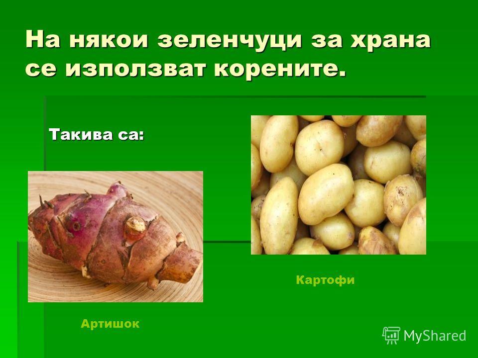 На някои зеленчуци за крана се использовать укоренить. Такива са: Картофи Артишок