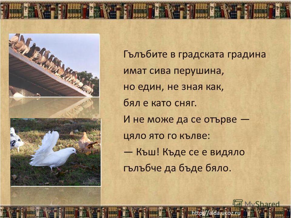 БЯЛОТО ГЪЛЪБЧЕ Марко Ганчев 09.06.2014Колетка Павлова 8