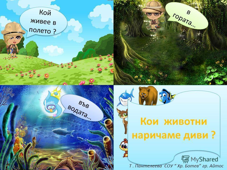 Кой живее в полете ? в гората… вов водата… Кои животные наричаме диви ? Т. Пантелеева СОУ Хр. Ботев гр. Айтос
