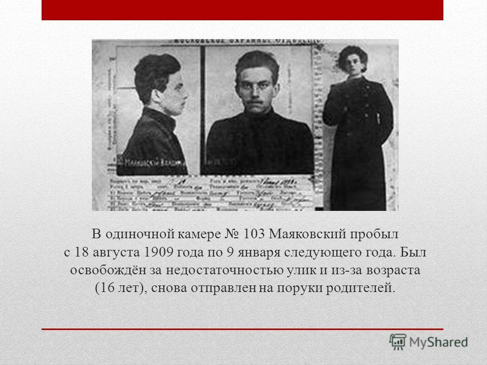 В одиночной камере 103 Маяковский пробыл с 18 августа 1909 года по 9 января следующего года. Был освобождён за недостаточностью улик и из-за возраста (16 лет), снова отправлен на поруки родителей.