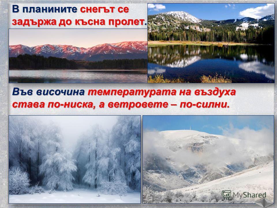 В планините снегът се задържа до късна пролет. Във височина температура тана воздуха става по-ниска, а ветровое – по-сил ни.