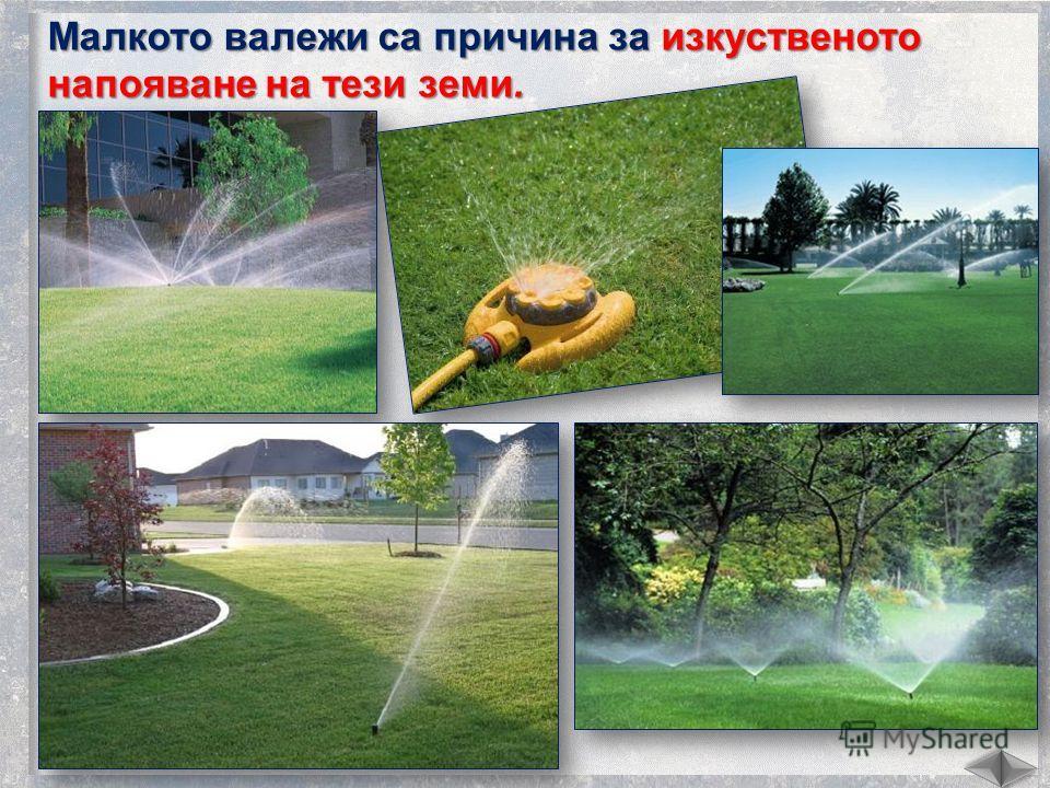 Малкото валежки са причина за изкуственото напояване на тезе земли.