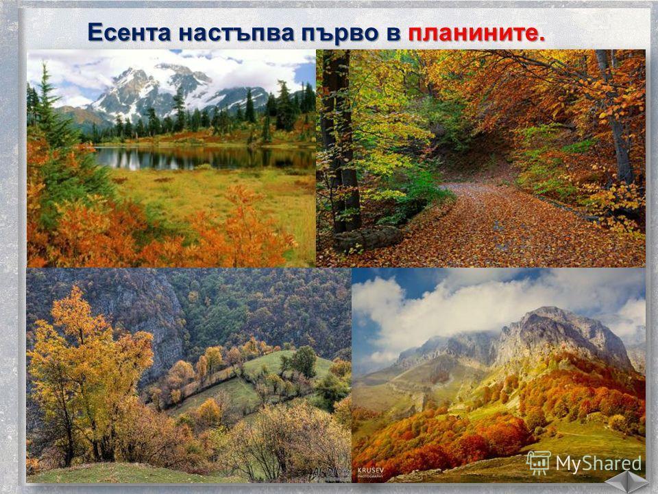 Есента настъпва първо в планините.