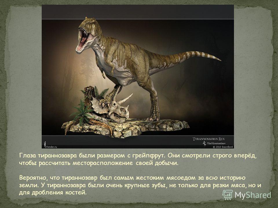 Реконструкция типового экземпляра, выставленного в Музее Естественной истории Карнеги (США)