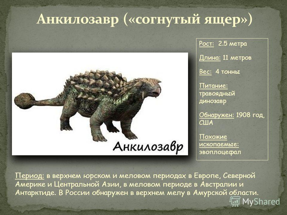 Меловой период геологический период, последний период Мезозойской эры. Начался 145 миллионов лет назад и закончился 65 миллионов лет назад. Среди наземных животных царствовали разнообразные динозавры: из ящеротазовых динозавров, самым известным из ко