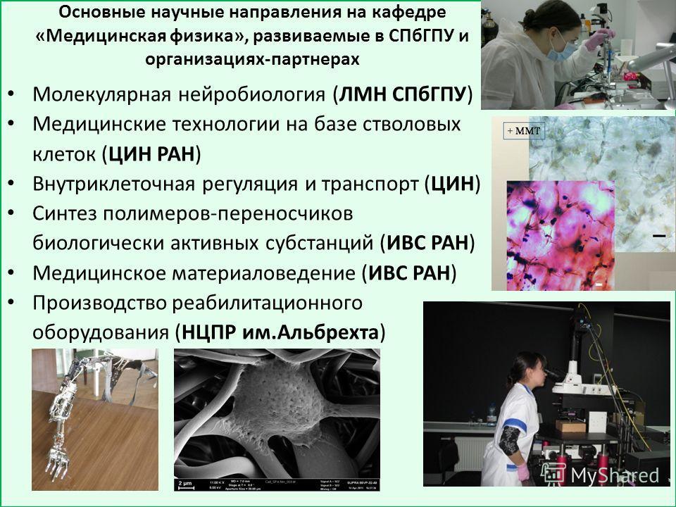 Основные научные направления на кафедре «Медицинская физика», развиваемые в СПбГПУ и организациях-партнерах Молекулярная нейробиология (ЛМН СПбГПУ) Медицинские технологии на базе стволовых клеток (ЦИН РАН) Внутриклеточная регуляция и транспорт (ЦИН)