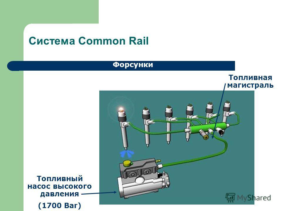 Система Common Rail Форсунки Топливный насос высокого давления (1700 Bar) Топливная магистраль