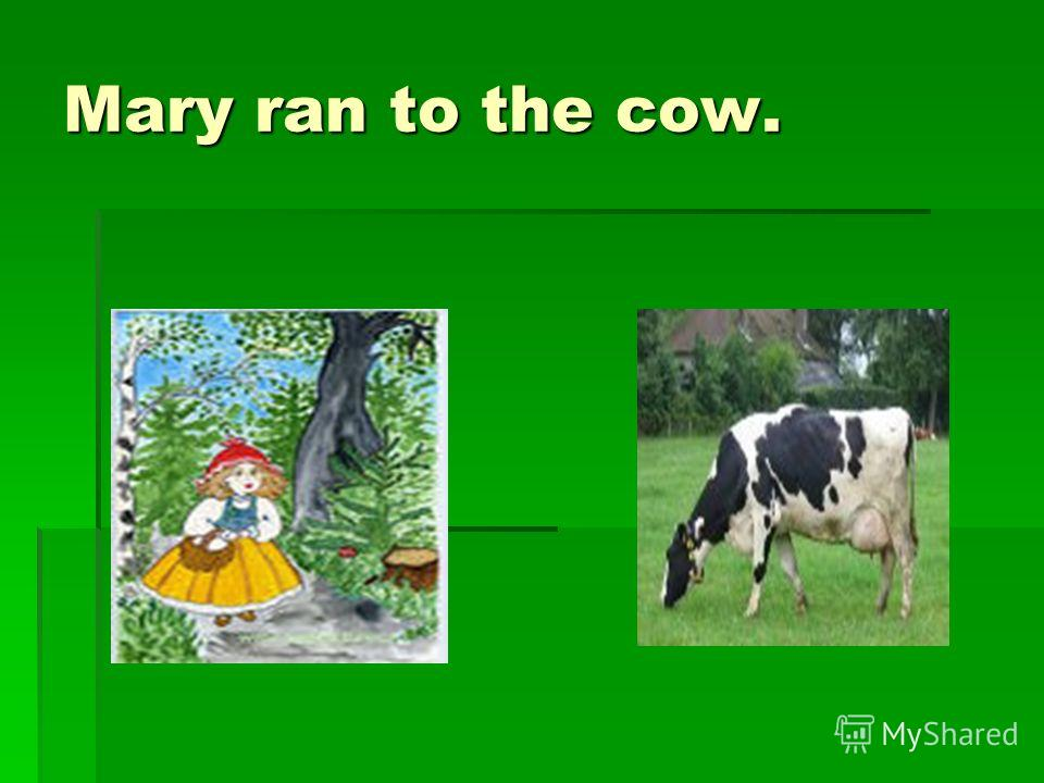 Mary ran to the cow.