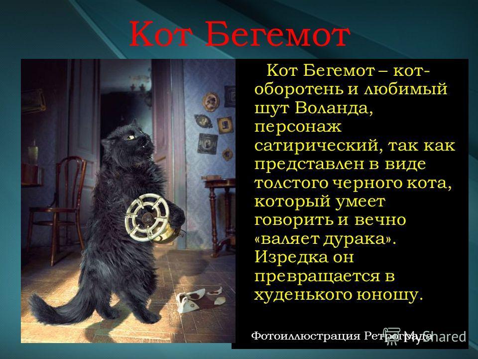Кот Бегемот Кот Бегемот – кот- оборотень и любимый шут Воланда, персонаж сатирический, так как представлен в виде толстого черного кота, который умеет говорить и вечно «валяет дурака». Изредка он превращается в худенького юношу. Фотоиллюстрация Ретро