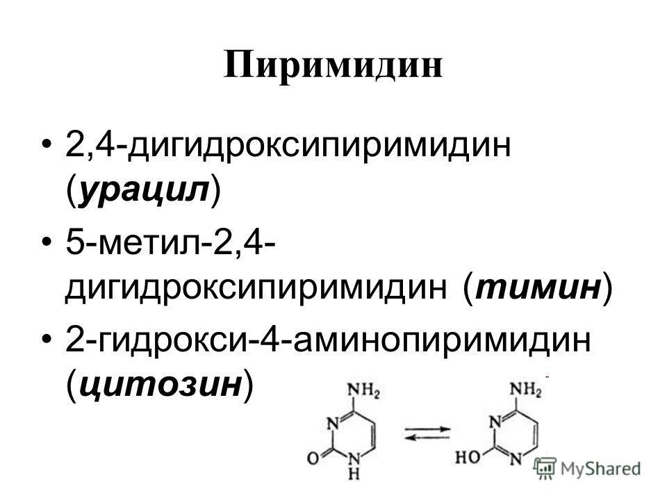 2,4-дигидроксипиримидин (урацил) 5-метил-2,4- дигидроксипиримидин (тимин) 2-гидрокси-4-аминопиримидин (цитозин)