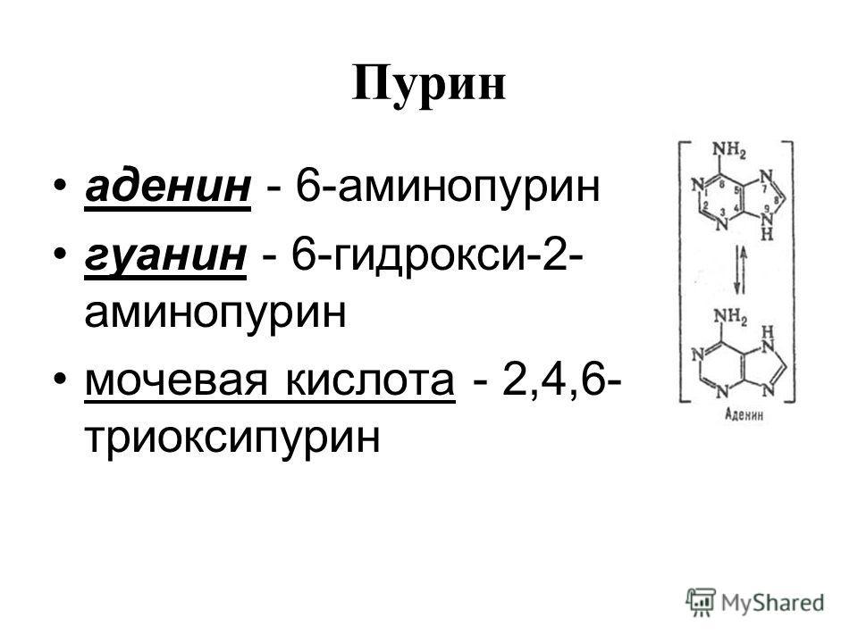 аденин - 6-аминопурин гуанин - 6-гидрокси-2- аминопурин мочевая кислота - 2,4,6- триоксипурин