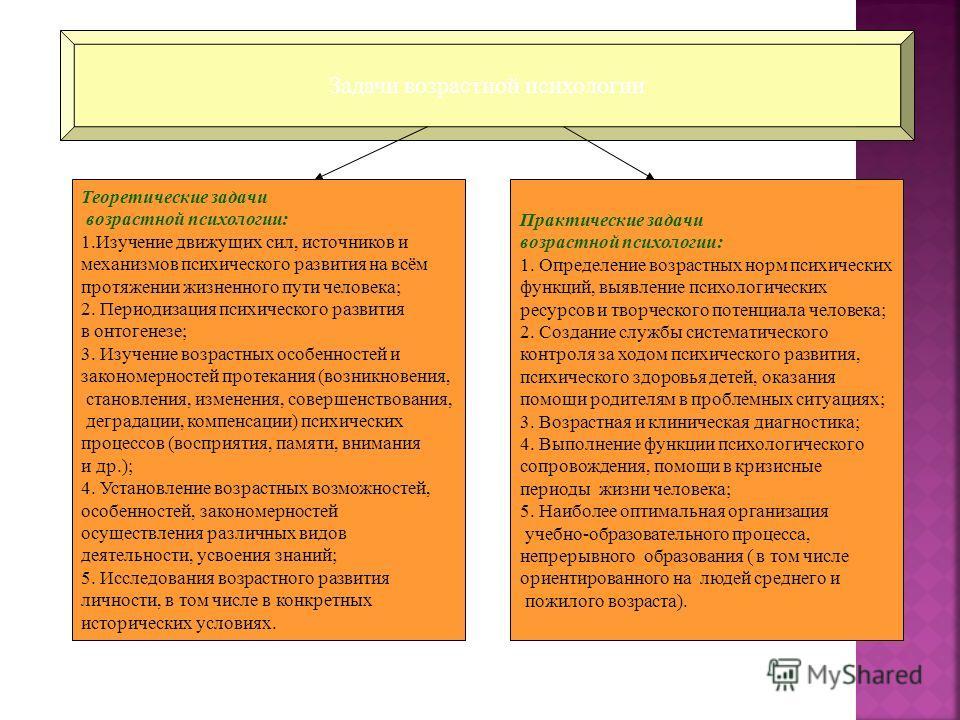 Задачи возрастной психологии Теоретические задачи возрастной психологии: 1. Изучение движущих сил, источников и механизмов психического развития на всём протяжении жизненного пути человека; 2. Периодизация психического развития в онтогенезе; 3. Изуче