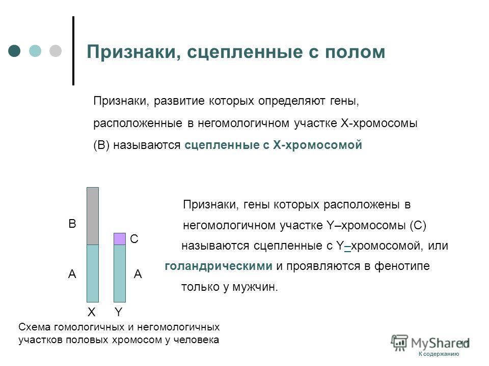 Признаки, сцепленные с полом Признаки, гены которых расположены в негомологичном участке Y–хромосомы (С) называются сцепленные с Y–хромосомой, или– голандрическими и проявляются в фенотипе только у мужчин. X A Y C B A Схема гомологичных и негомологич