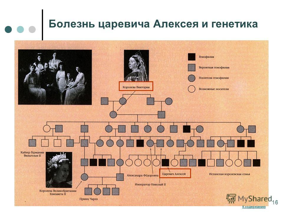 Болезнь царевича Алексея и генетика 16 К содержанию