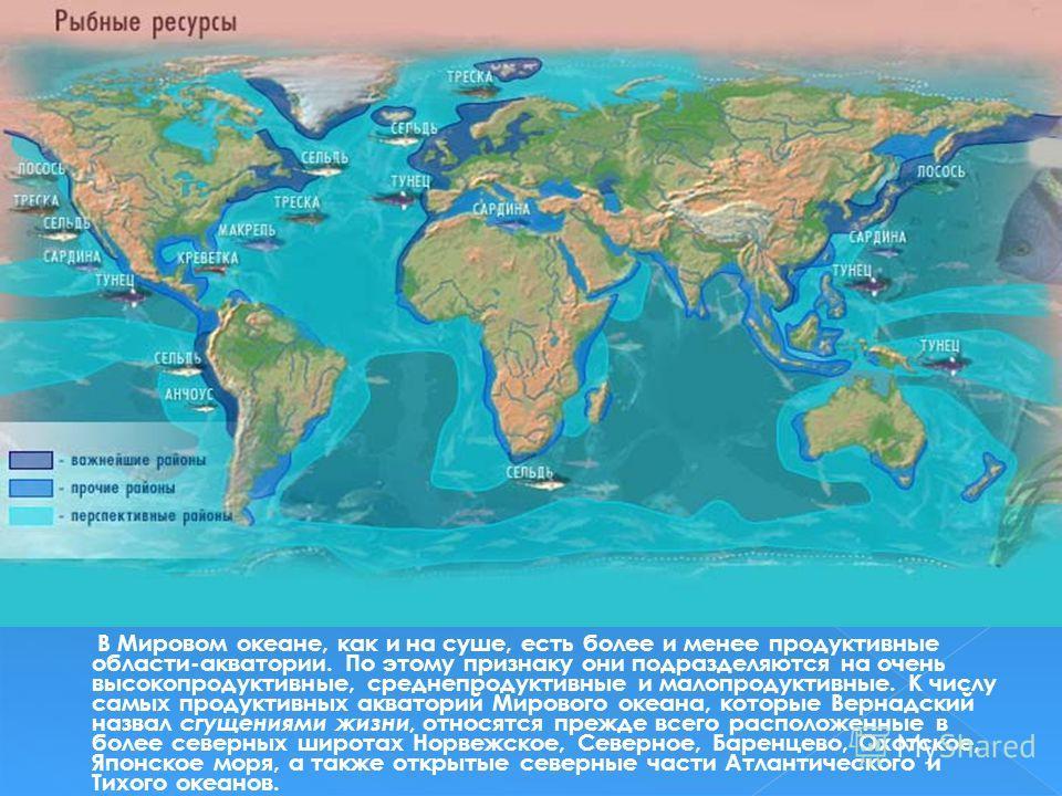 В Мировом океане, как и на суше, есть более и менее продуктивные области-акватории. По этому признаку они подразделяются на очень высокопродуктивные, средне продуктивные и малопродуктивные. К числу самых продуктивных акваторий Мирового океана, которы